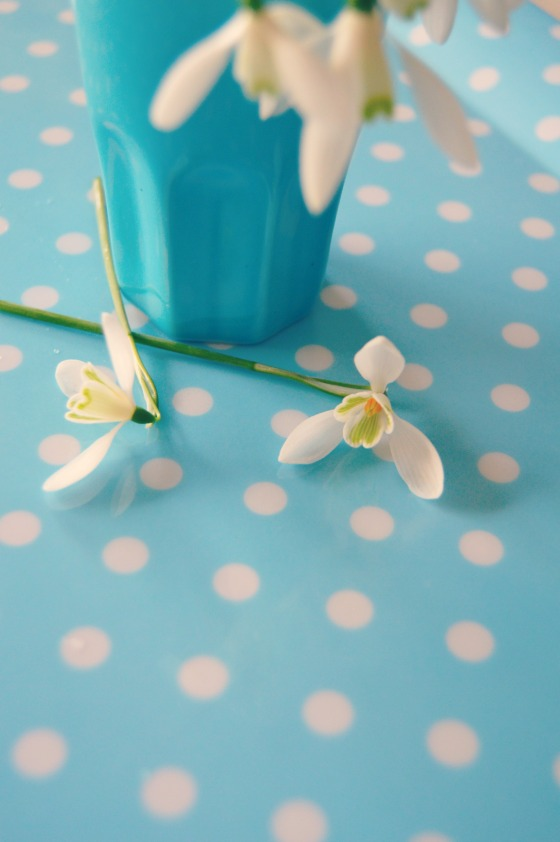 polka dots and snowdrops...