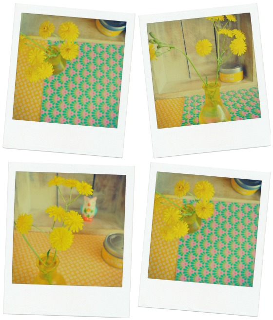 Snaps of yellow.2