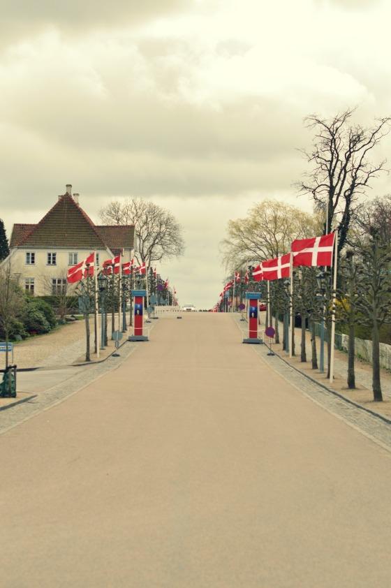 DSC_0998 flags
